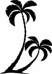 muursticker palmboom - Muurstickers
