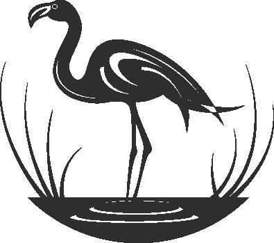 Muursticker flamingo in water -