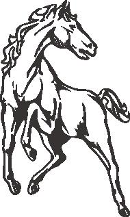 Muursticker paard 1 -