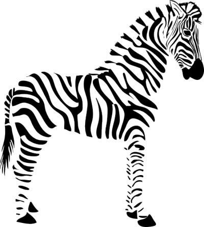 Muursticker zebra -