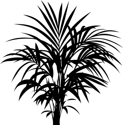 Decoratiesticker kamerplant -