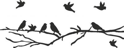 Muursticker vogeltjes op een tak -