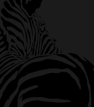 woonkamer - zebra -
