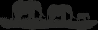 Woonkamer - olifantjes -