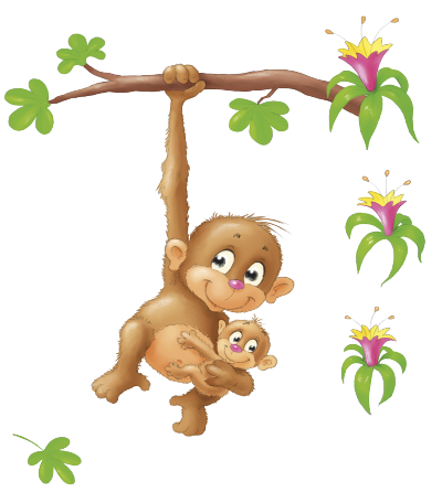 Safari dieren aap -