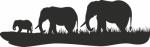 Muursticker 3 olifanten - Muurstickers