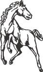 Muursticker paard 1 - Muurstickers