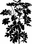 Decoratiesticker plant shefflera - Muurstickers
