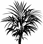 Decoratiesticker kamerplant - Muurstickers