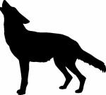 Muursticker wolf - Muurstickers