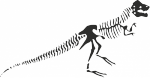 Muursticker skelet dino - Muurstickers