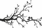 Muursticker tak met 2 vogels - Muurstickers