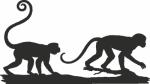 Muursticker apen op tak - Muurstickers