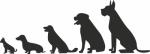 Muursticker honden - Muurstickers
