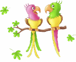 muursticker safari vogels -  Full color stickers